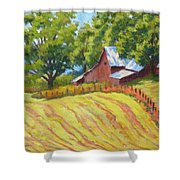 Summer Patterns Shower Curtain