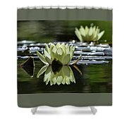 Summer Peace In The Rock Gardens Shower Curtain