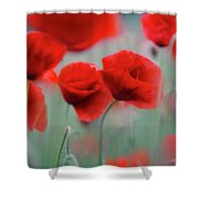 Summer Poppy Meadow 2 Shower Curtain