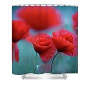Summer Poppy Meadow 3 Shower Curtain