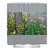 Summer River Bank View             July            Indiana Shower Curtain