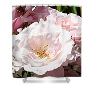 Summer Rose Garden Pink Flowers Baslee Troutman Shower Curtain