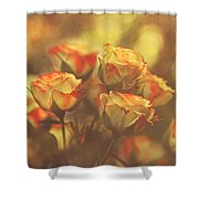 Summer Roses #1 Shower Curtain by Pat Abbott