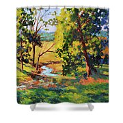 Summer Shadows Shower Curtain