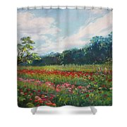 Summer Solstice Shower Curtain