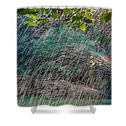Summer Sprinkler Shower Curtain