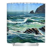 Summer Surf Shower Curtain
