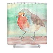 Summer Time Robin Shower Curtain