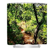 Summer Trail  Shower Curtain