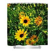 Summer Wildflower Dreams Shower Curtain