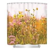 Summer Wildflower Field Of Sunflowers Shower Curtain