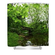 Summer Woodland And The Patapsco River Maryland Shower Curtain