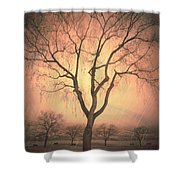 Summerland Light In Winter Shower Curtain