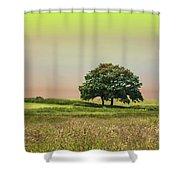 Summer's Evening Shower Curtain