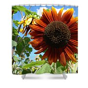 Summers Here Shower Curtain