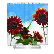 Summertime Memories Shower Curtain