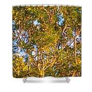 Summertime Tree Shower Curtain