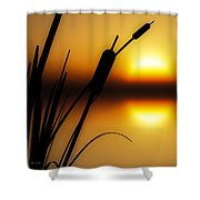 Summertime Whispers  Shower Curtain