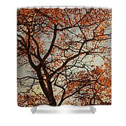 Summing Nature Call  Shower Curtain