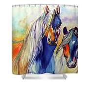 Sun And Shadow Equine Abstract Shower Curtain