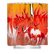 Sun Ball Two Shower Curtain