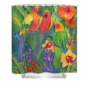 Sun Conure Parrots Shower Curtain