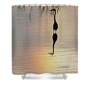 Sun Dog And Heron 1 Shower Curtain