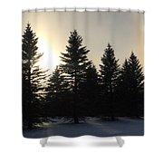 Sun Dog Series 5 Shower Curtain