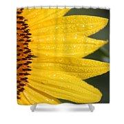 Sun East Shower Curtain