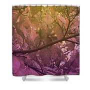 Sun Filter Shower Curtain