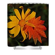 Sun Flower And Leaf Shower Curtain