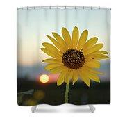 Sun Flower At Sunset Shower Curtain