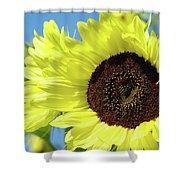 Sun Flower Garden Art Prints Sunflowers Baslee Troutman Shower Curtain