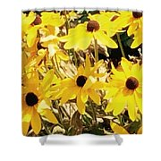 Sun Flower Glory Shower Curtain