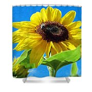 Sun Flower - Id 16235-142741-1520 Shower Curtain