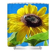 Sun Flower - Id 16235-142743-3974 Shower Curtain