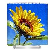 Sun Flower - Id 16235-142812-7136 Shower Curtain