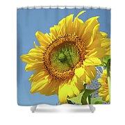 Sun Flowers Garden Art Prints Baslee Troutman Shower Curtain