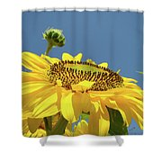 Sun Flowers Summer Sunny Day 8 Blue Skies Giclee Art Prints Baslee Troutman Shower Curtain