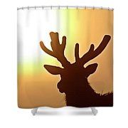 Sun Glaring Over A Bull Elk Shower Curtain