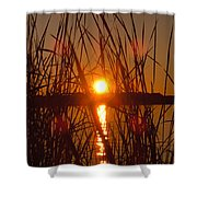 Sun In Reeds Shower Curtain