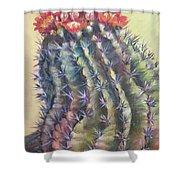 Sun Kissed Barrel Cactus Shower Curtain