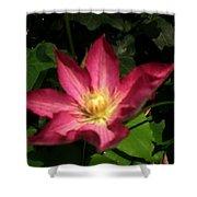 Sun Kissed Flower Shower Curtain