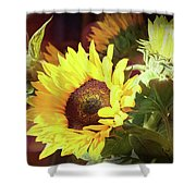 Sun Of The Flower Shower Curtain by Michael Hope