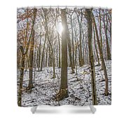 Sun Peaking Through The Trees - Fairmount Park Shower Curtain