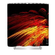 Sun Plumes Shower Curtain