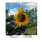 Sun Power Shower Curtain