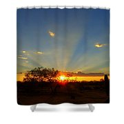 Sun Rays At Sunset With Tree And Saguaro Shower Curtain
