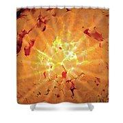 Sun Rays For Lori Shower Curtain