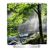 Sun Rays On Williams River  Shower Curtain